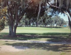 Designer home on golf course availalbe Jan and Feb 2020 The Villages Florida
