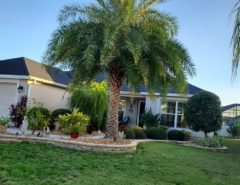 FOR SALE BY OWNER The Villages Florida